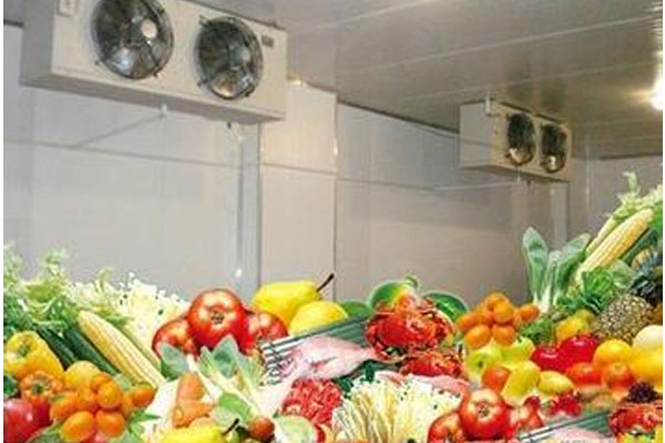 Fruit and vegetable cold storage